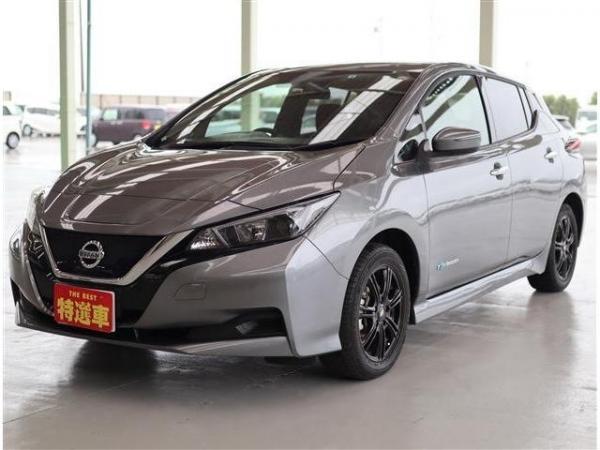 Nissan Leaf II серый