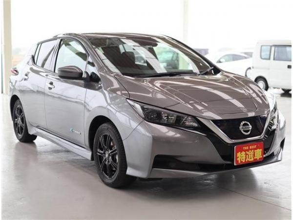 Nissan Leaf II grey